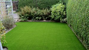 Why Palmetto Buffalo Grass Can Be Considered A Perfect Lawn Solution Blogdrop